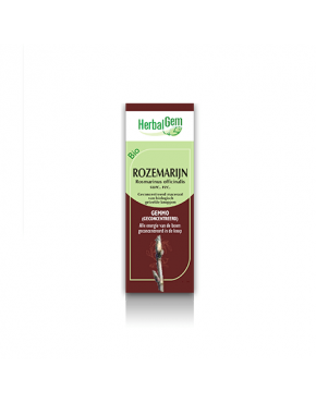Rozemarijn BIO - 15 ml